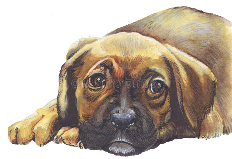 Sad puppy dog stock illustration