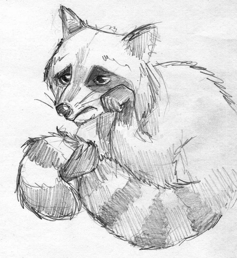 Sad raccoon pencil sketch. Hand drawn pencil sketch of a little sad raccoon character, weeping vector illustration