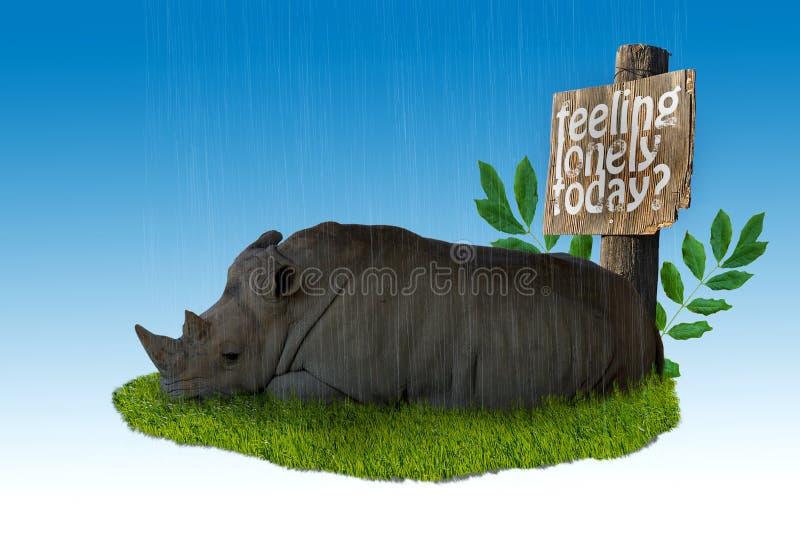 Sad Rhino stock image