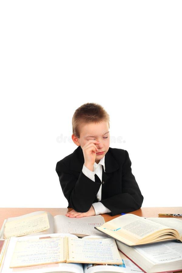 Download Sad schoolboy stock image. Image of discontent, caucasian - 23219339