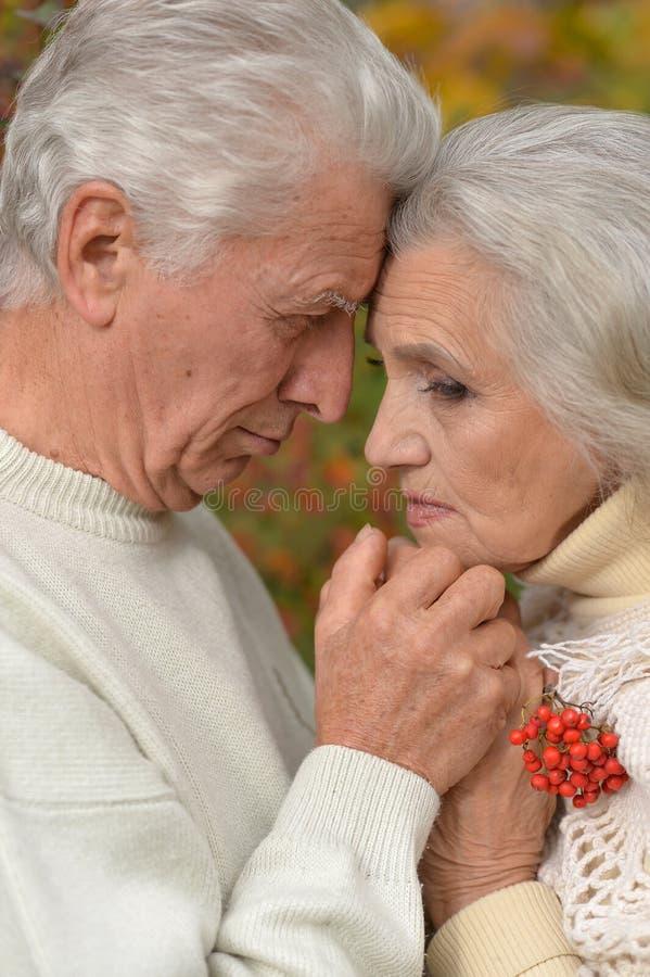 Sad senior couple in park. Portrait of sad senior couple in autumn park royalty free stock image