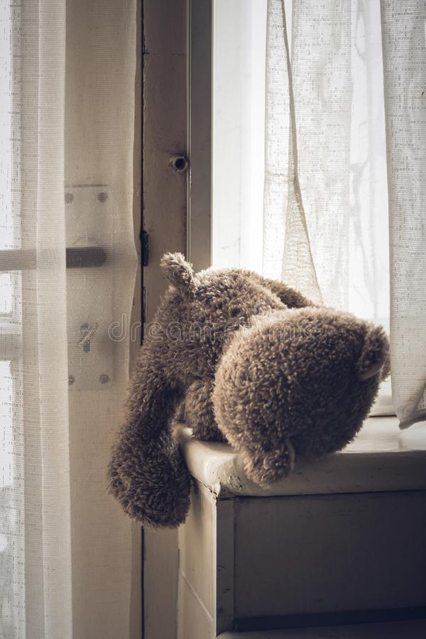 Sad teddy bear left behind stock image