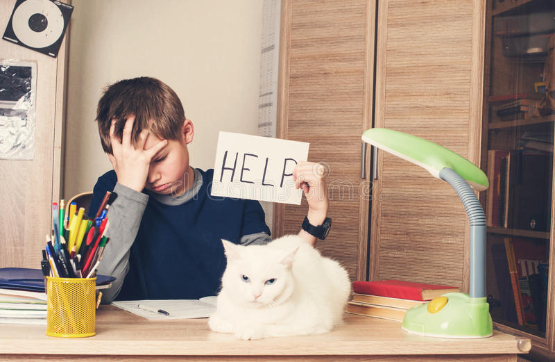 Sad and tired pre teen schoolboy sitting in stress working doing. Homework, asking for help with cat on his desk royalty free stock image