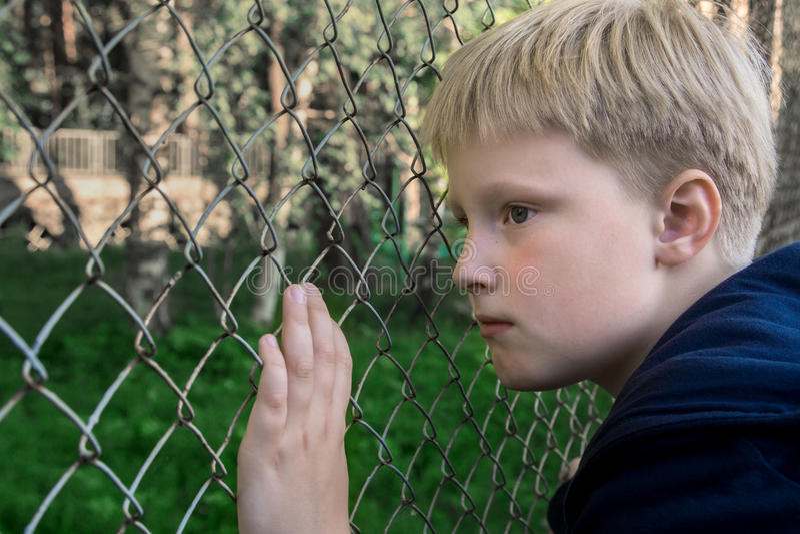 Sad upset boy royalty free stock photography