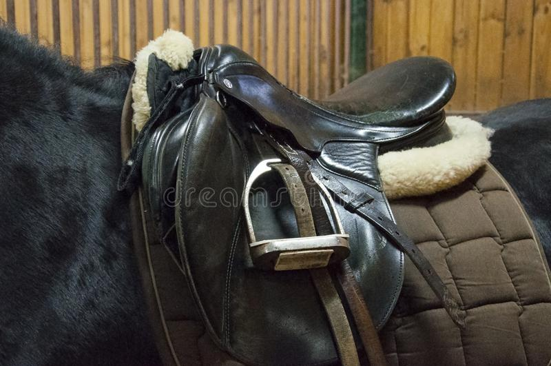 Saddle on a black horse royalty free stock images