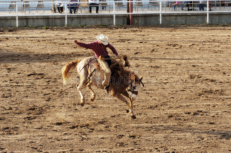 Saddle Bronc stock photo