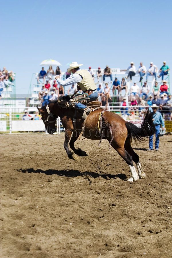 Free Saddle Bronc Stock Image - 457051