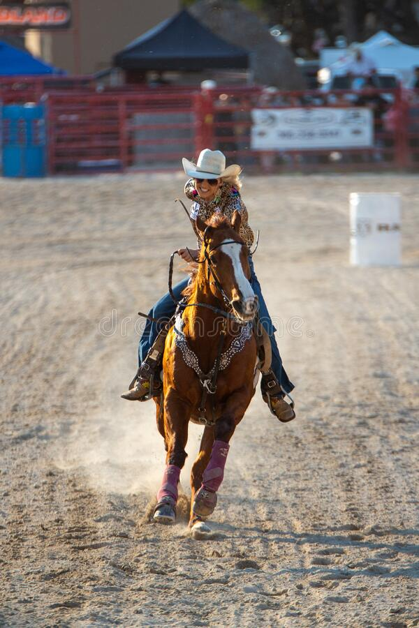 Free Saddle Bronc Riding, Bareback Riding. Bull Riding Competition. Cowboy Steer Wrestling, Team Roping, Tie-down Roping. Barrel Riding Stock Photo - 170544940