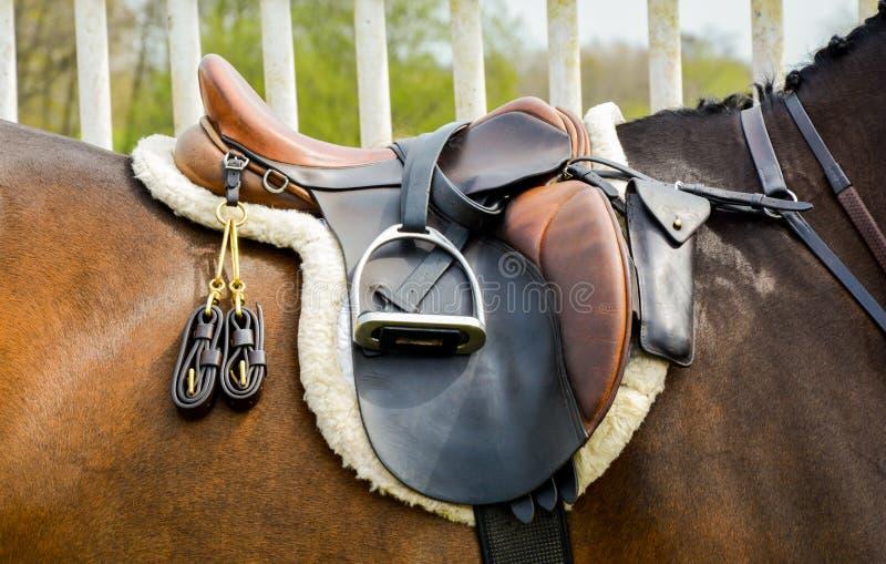 Saddle on horse royalty free stock images