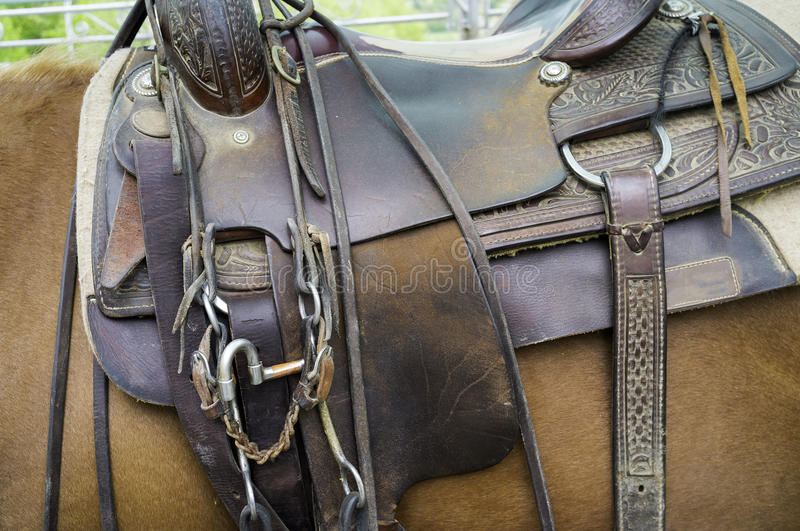 Saddle for horses, detail. Color image stock photos