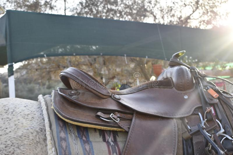 The saddle royalty free stock images