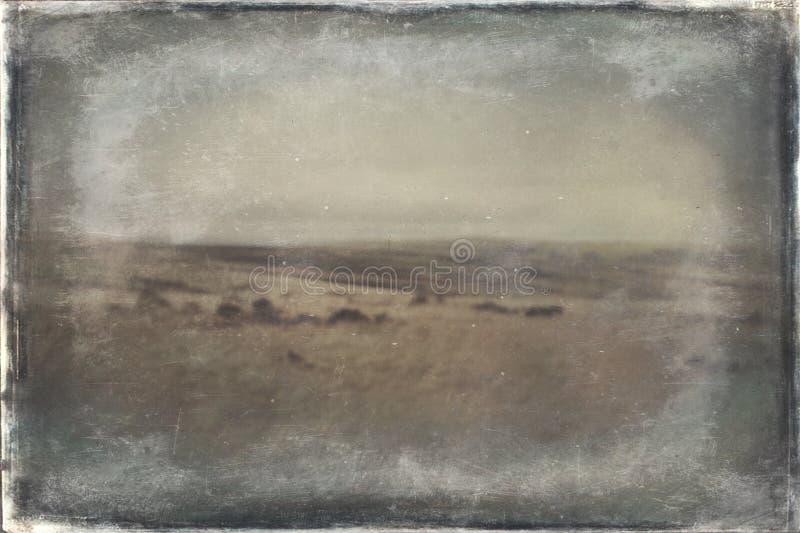 Saddleworth Moor stock photography