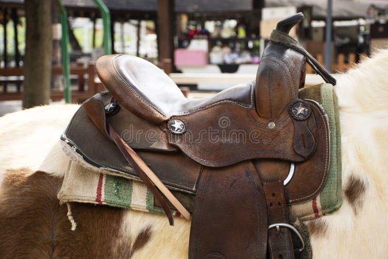 Sadelläder på baksida av den dvärg- hästen i stall på den djura lantgården i Saraburi, Thailand royaltyfria bilder