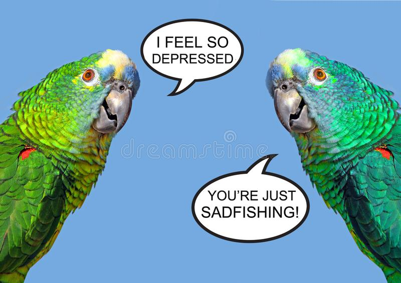 Sadfishing toxic online social media emotional problem internet children schoolchildren solace attention. Concept photo of two parrots depicting the toxic social stock photos