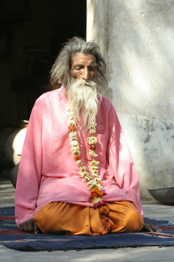 Sadhu, святой человек стоковое изображение rf