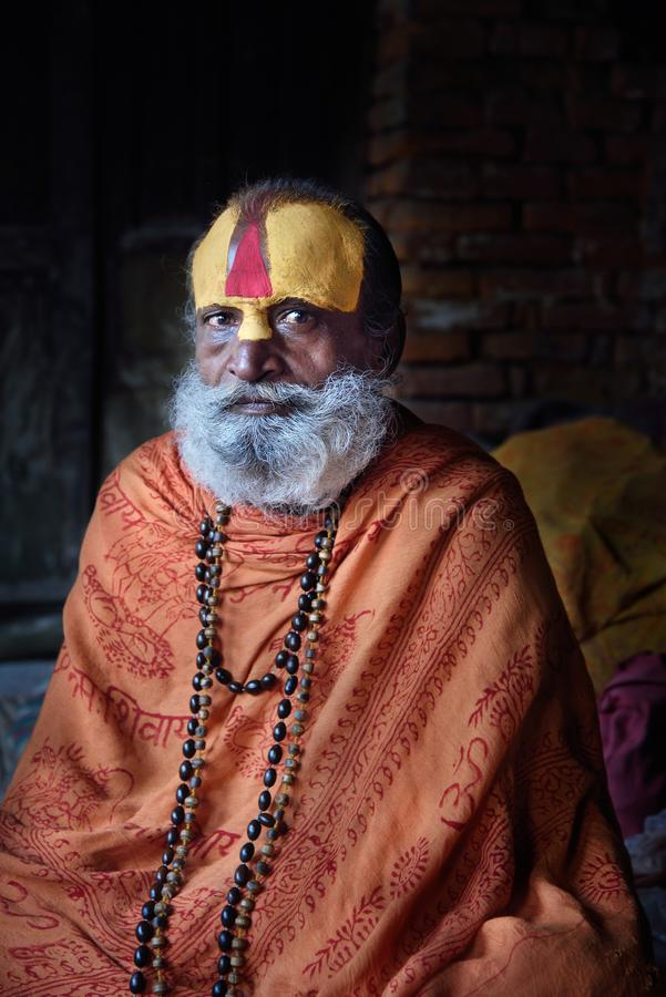 Sadhu au temple de Pashupatinath photographie stock