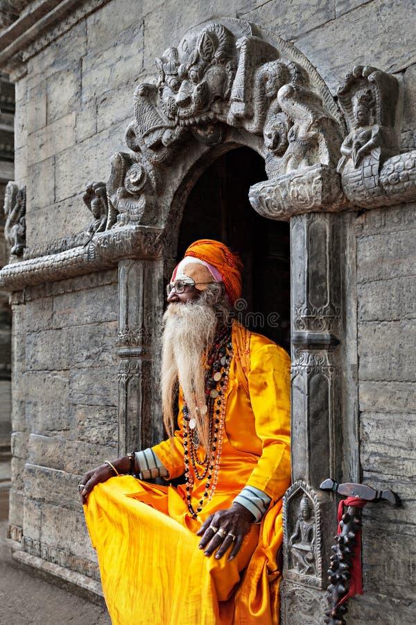Sadhu au temple de Pashupatinath images stock