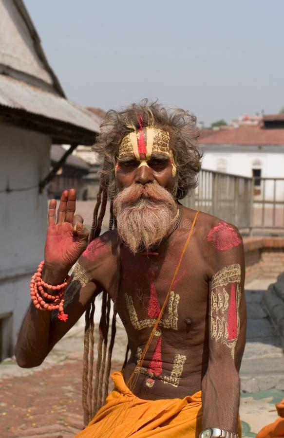 Sadhu de Shaiva imagem de stock royalty free