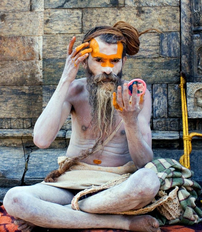 Sadhu de Shaiva (homem santamente) imagem de stock