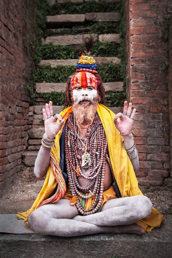 Sadhu en el templo de Pashupatinath imagen de archivo libre de regalías