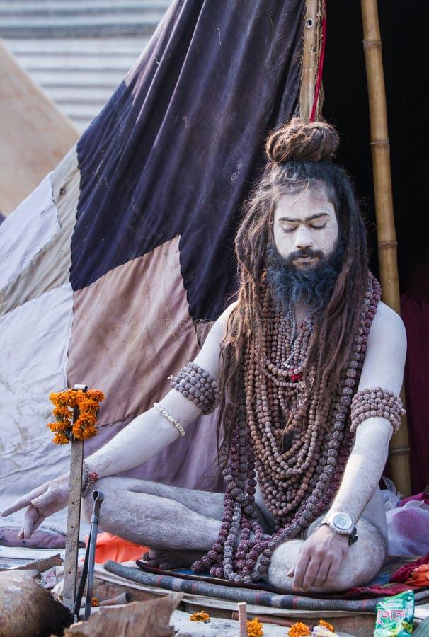 Download Sadhu Hindú En El Kumbha Mela En La India Imagen de archivo editorial - Imagen de asia, mendicant: 42428869