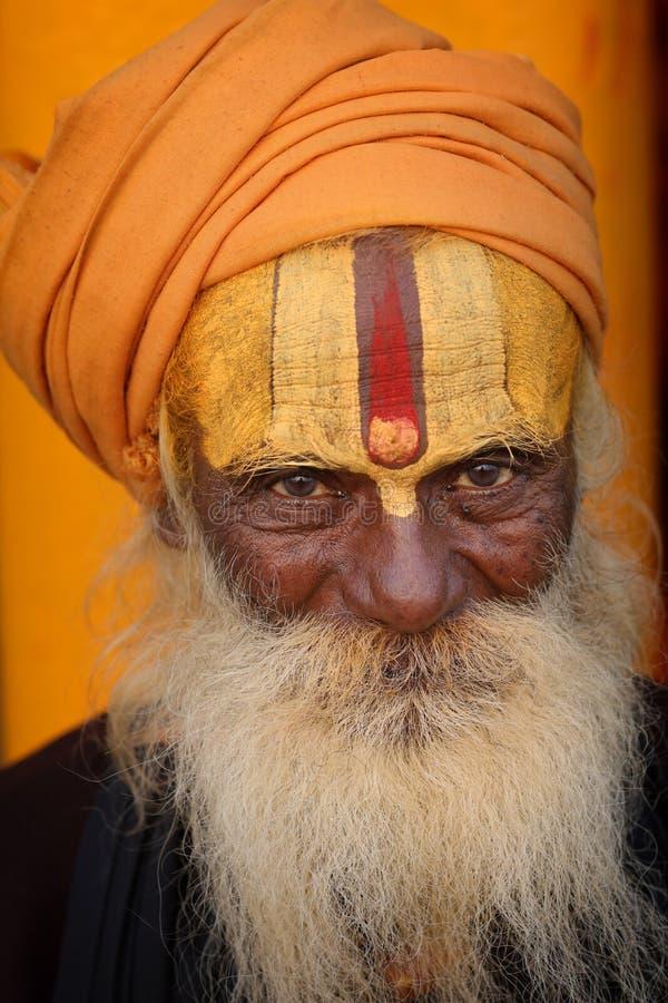 Sadhu (homem santamente) em Varanasi, India imagem de stock