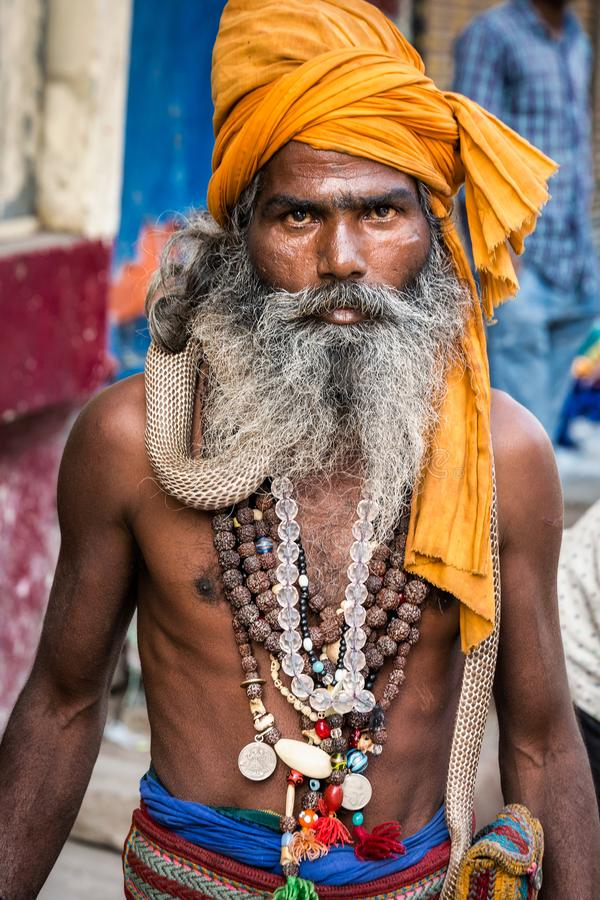 Sadhu India del serpente immagine stock libera da diritti