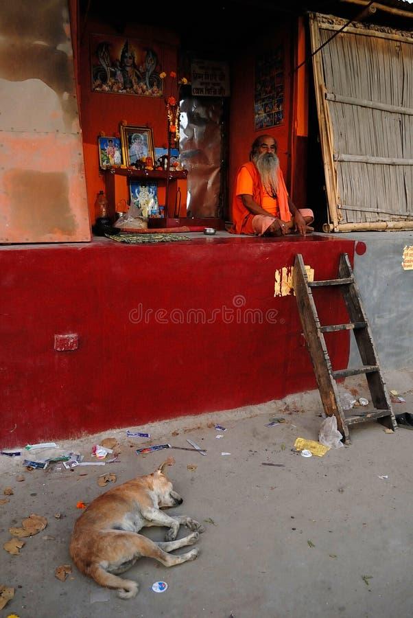 Sadhu no Hinduísmo fotografia de stock