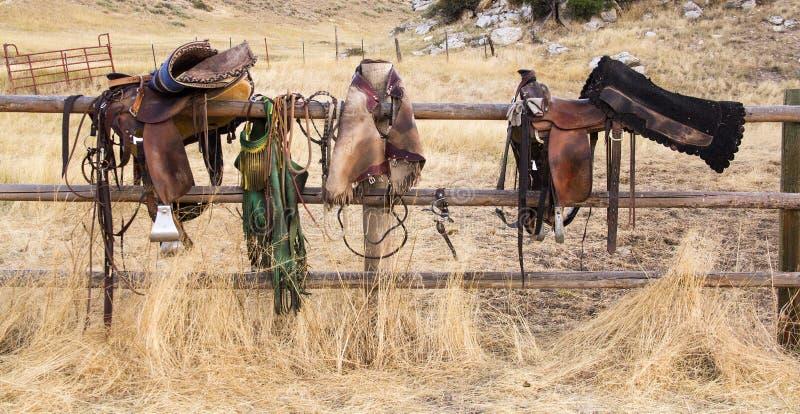 Sadlar på staketet royaltyfri foto