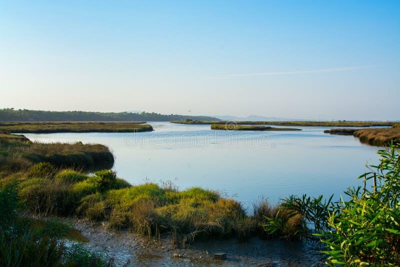 Sado реки в Comporta, Alentejo Португалии стоковые фотографии rf