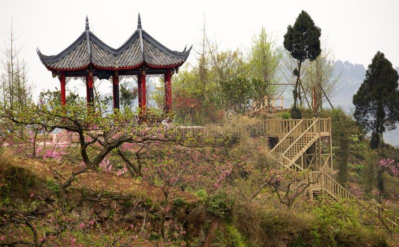 sadu chinom brzoskwiń pagodowa Syczuan czerwony zdjęcie royalty free
