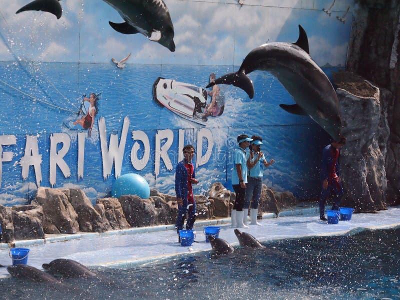 Safari światu zoo zdjęcia stock