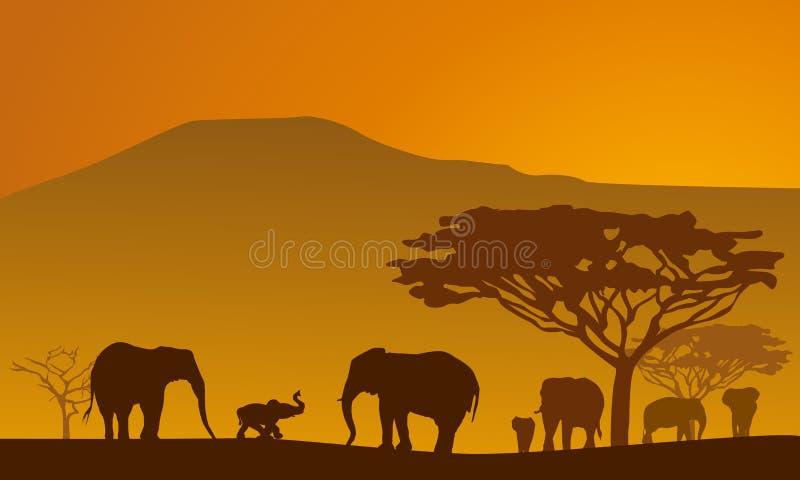 Safari-1. Silhouettes of elephants on backgrounds Kilimanjaro