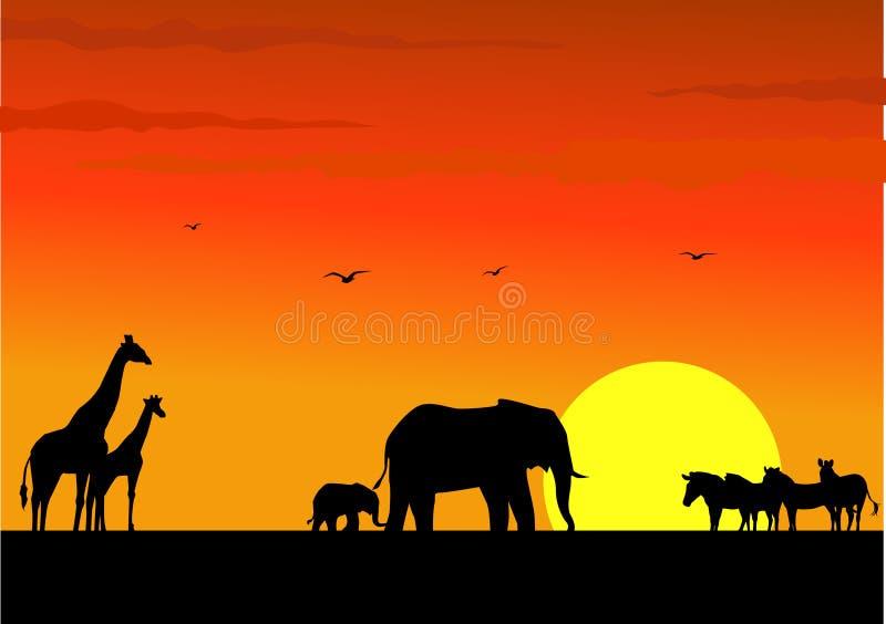 Download Safari Africa stock vector. Image of orange, landscape - 11962135