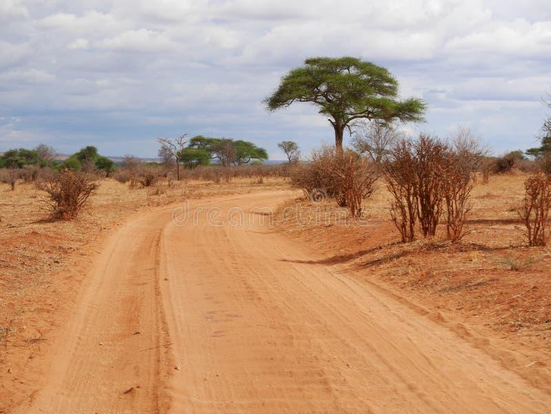 Download Safari In Africa Tarangiri-Ngorongoro Stock Image - Image: 105289713