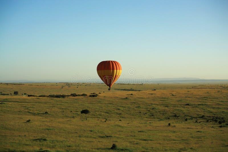 Safari africano do balão fotografia de stock