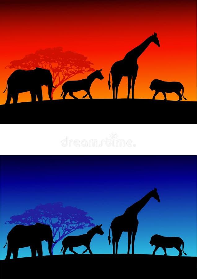 Download Safari background stock vector. Image of mammal, prey - 22459832