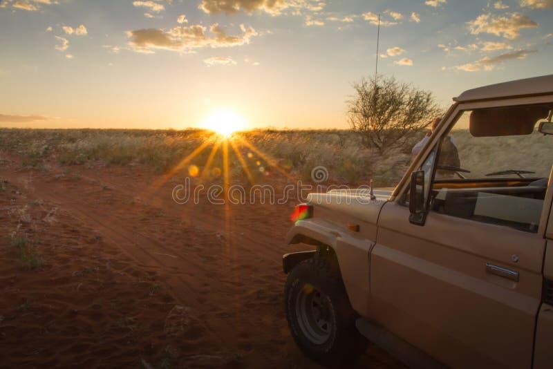 Safari bij de zonsondergang, Namibië stock afbeeldingen