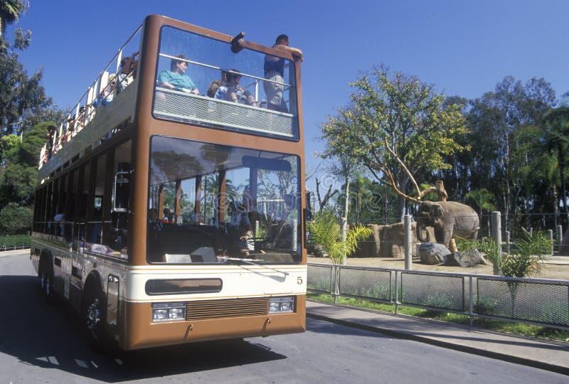 Safari Bus et touristes chez San Diego Zoo, CA images libres de droits