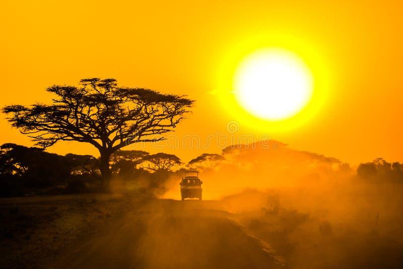 Safari dżipa jeżdżenie przez sawanny zdjęcie stock