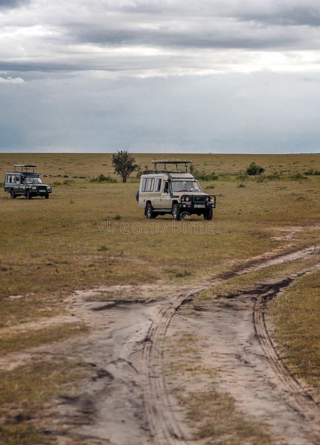 Safari de dos coches imagen de archivo libre de regalías