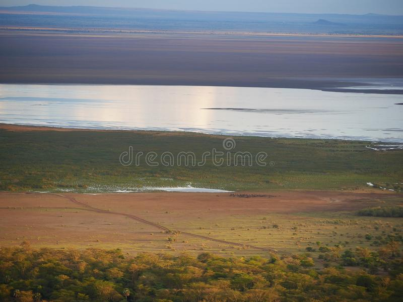Safari de Manyara del lago en Afric fotos de archivo libres de regalías