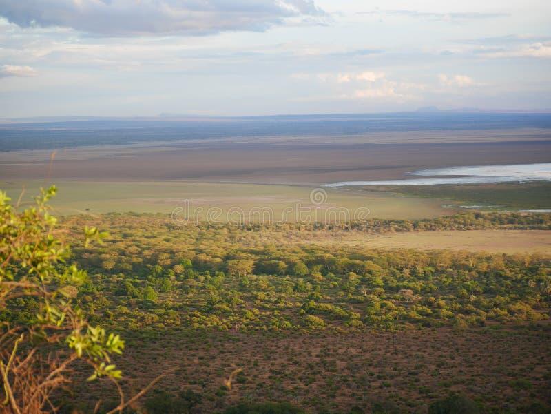 Safari de Manyara del lago en Afric fotografía de archivo