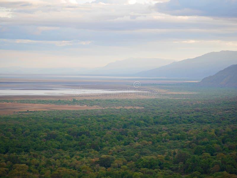 Safari de Manyara del lago en Afric imagen de archivo libre de regalías