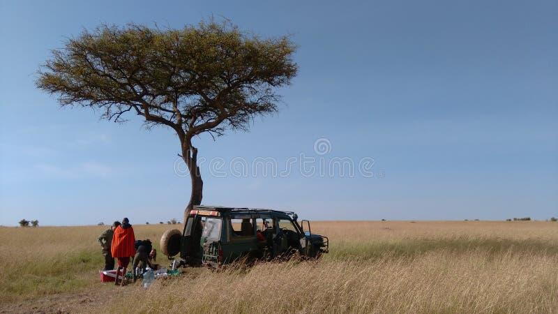Safari de Mara de maasai de petit déjeuner image libre de droits