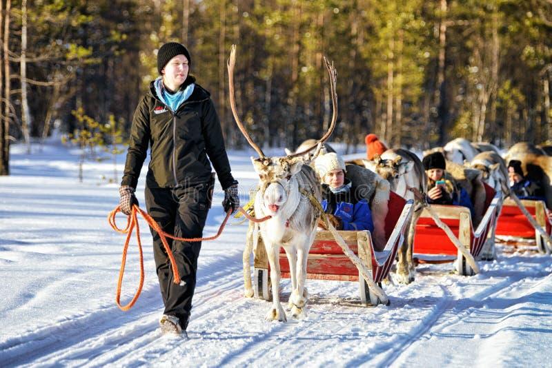 Safari del caravan della slitta della renna con la gente nel rivestimento finlandese della foresta immagini stock libere da diritti