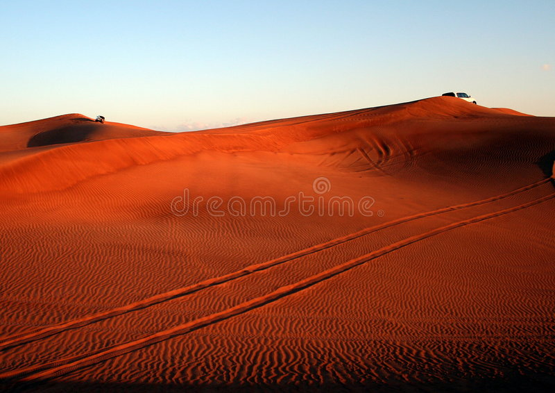 Safari del deserto fotografia stock