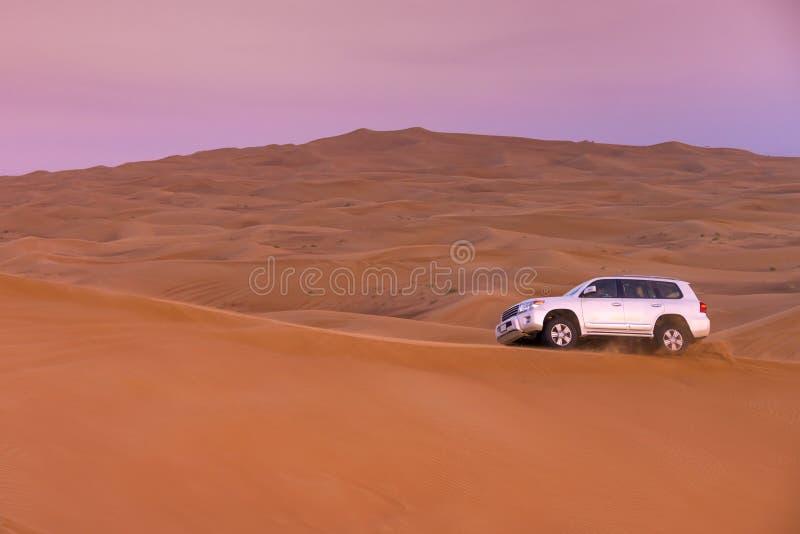 Safari del deserto del Dubai fotografia stock libera da diritti