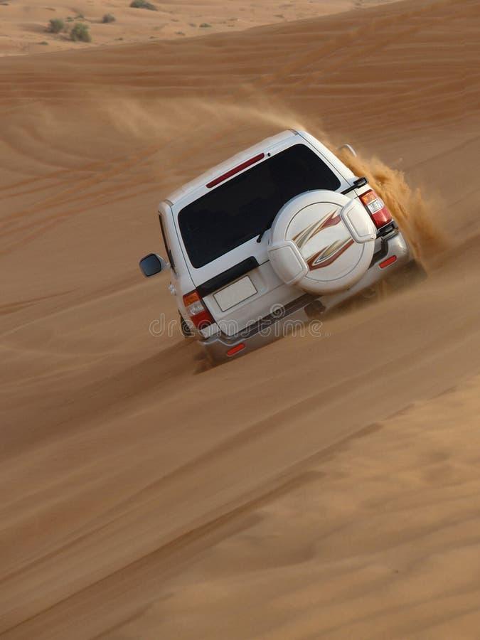 Safari del deserto nell'azione fotografia stock