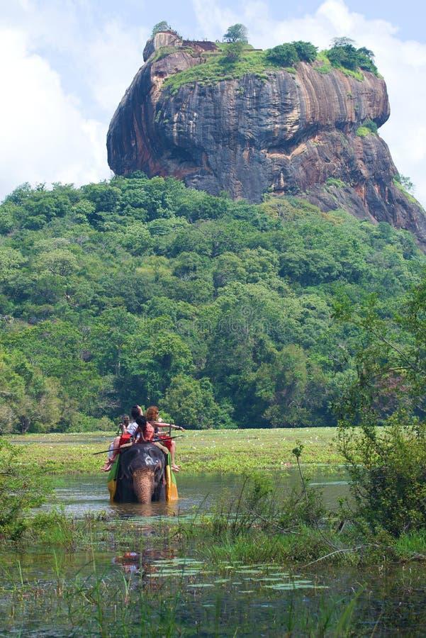 Safari del elefante en el pie de la montaña de Sigiriya, Sri Lanka fotos de archivo libres de regalías